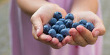 7 Things You Probably Didn't Know About Blueberries