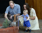 Prince George's First Encounter With a Bilby