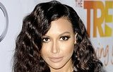 6 Things You Should Know About Naya Rivera's New Husband, Ryan Dorsey