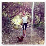 10 Adorable Celeb Pets That Work Out