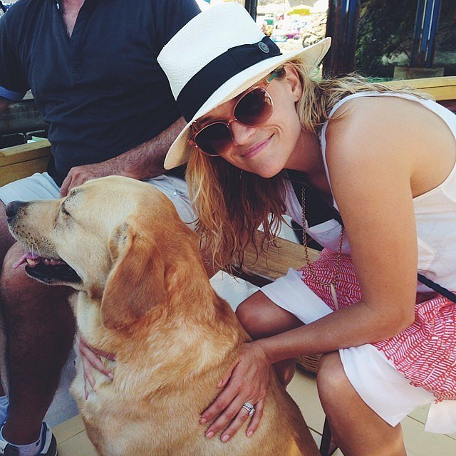 """Reese quipped about how her furry friend Leone didn't pay attention to the camera. """"Guess he's a little camera shy,"""" she wrote.  Source: Instagram user reesewitherspoon"""