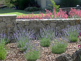 Make This Fall's Garden the Best Ever (12 photos)