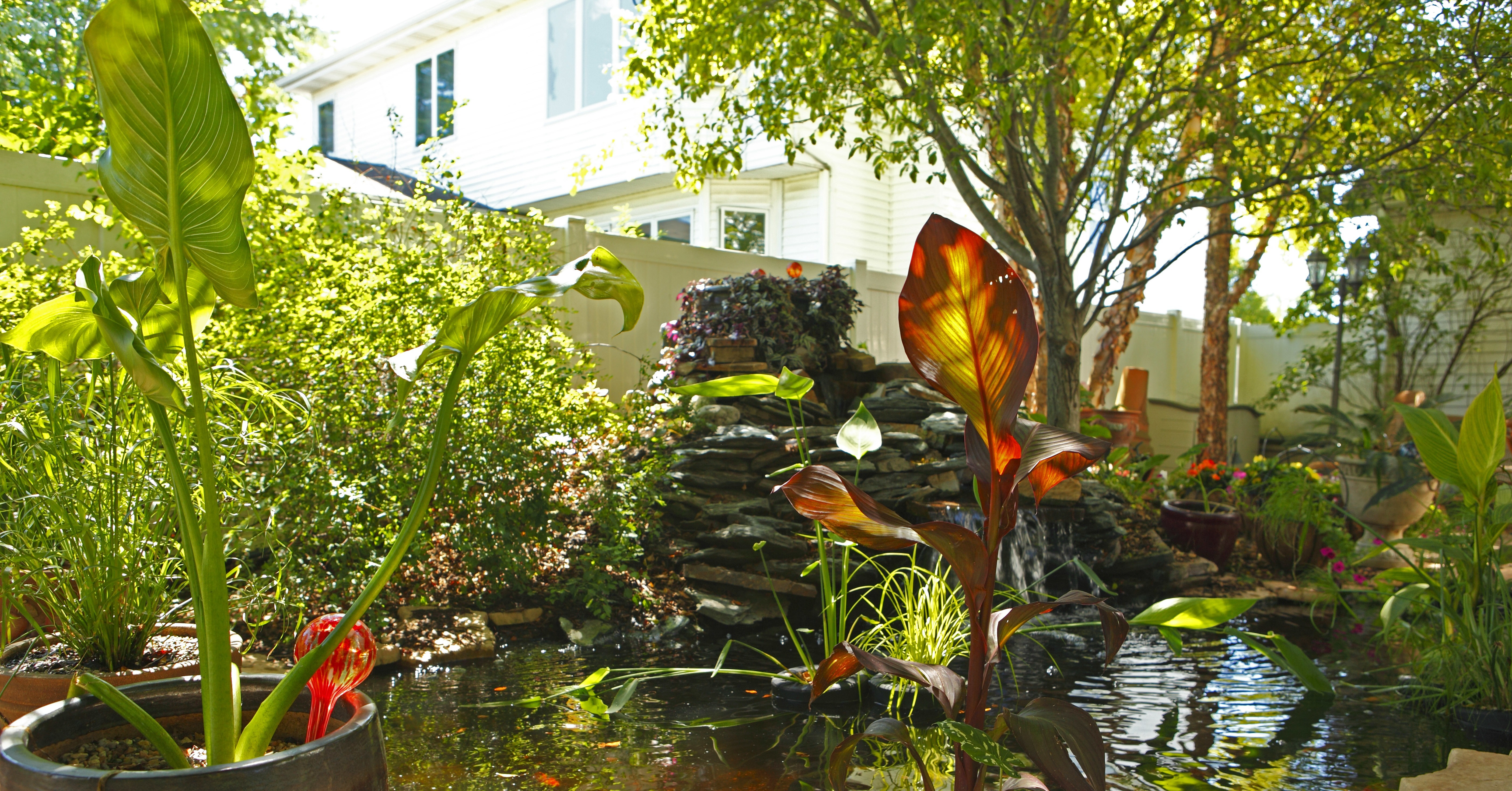 Koi pond 15 real backyards that will inspire you to get for Koi fish pond lowes
