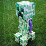 Minecraft Costumes For Kids