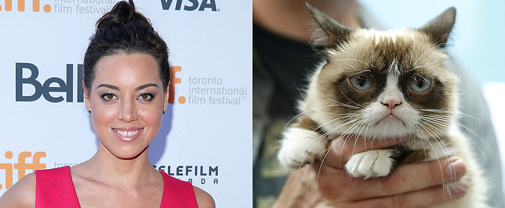 Internet, Rejoice! Aubrey Plaza Is the Voice of Grumpy Cat