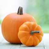 11 Surprising Facts About Pumpkins