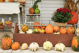 Simple Pleasures: Fall Traditions for a Special Season (10 photos)