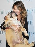 Chrissy Teigen's 25 Funniest Tweets of the Last Month