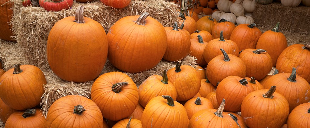 Healthy Ways to Use Up Your Leftover Halloween Pumpkin