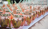 Spice Up Your Signature Sips With Creative Barware!