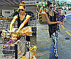 Photos of Jessica Alba and Honor at the Grocery Store 2009-10-16 15:47:21