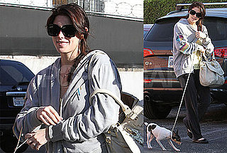 Photos of New Moon's Ashley Greene Walking Her Dog in LA