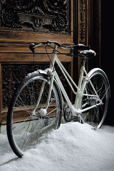 Got a shiny, pretty bike? There's no reason you can't store it indoors — show that investment off!