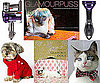 Pet&#039;s December Must Haves 