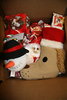 Will Your Pets Get Gifted This Holiday Season?