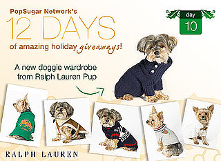 Wanna Win a Ralph Lauren Pup Wardrobe?: In the LINK of an Eye
