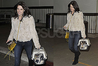 Photos of New Moon's Ashley Greene at LAX