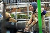 Photos of Pete Wentz and Bronx at a NYC Park
