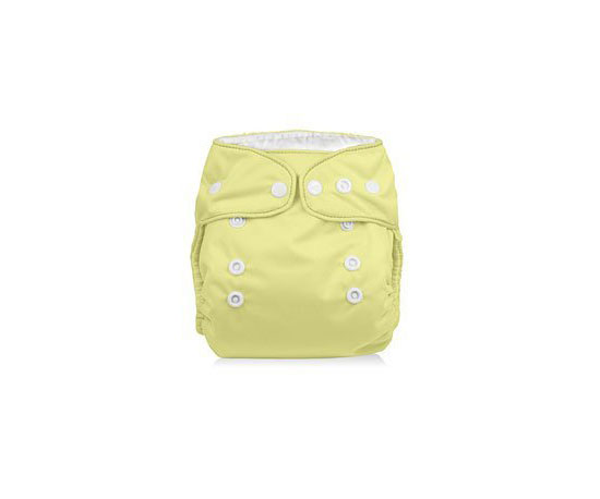 Smartipants Cloth Diapers