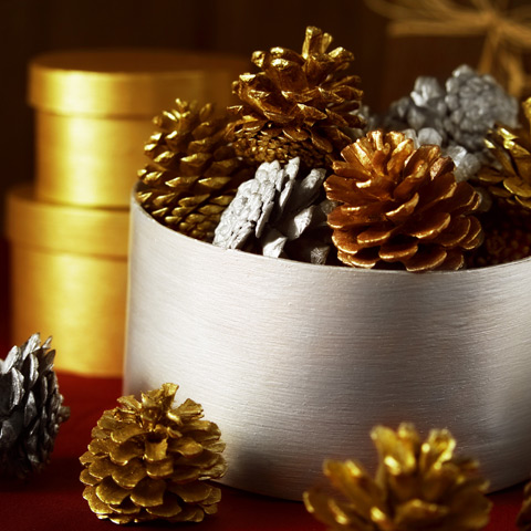 Paint some pine cones with Taika Pearl Paints using a small brush, or dip them to get the look.