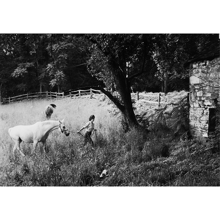 I adore this Jackie Kennedy Photo ($800), which was taken at her mother's farm in Virginia.