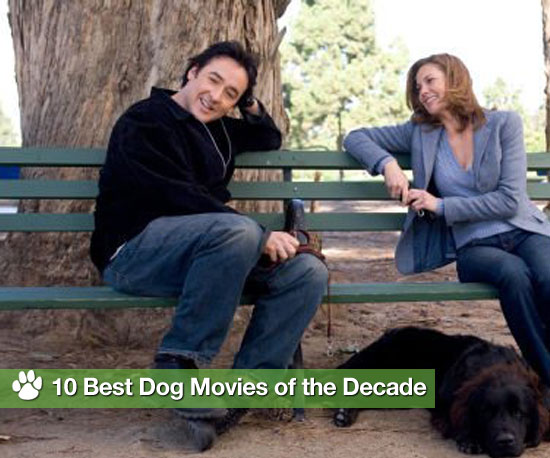10 Best Dog Movies of the Decade