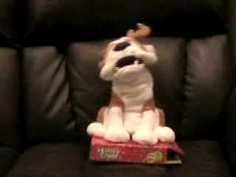Is This Dog Toy Possessed?: In the LINK of an Eye!
