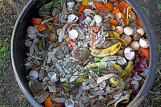 San Francisco Becomes First City to Require Composting