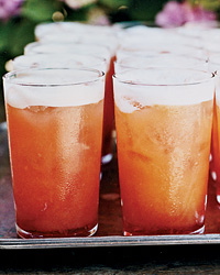 Campari Cocktail Recipe For a Crowd