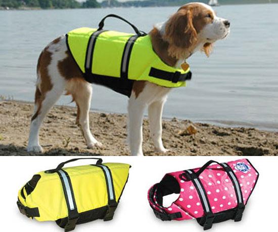 Paws Aboard Doggy Lifejacket