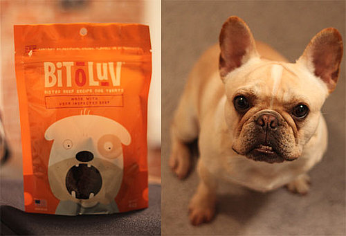 Bit O Luv Doggie Treats: PetSugar Street Team Tested