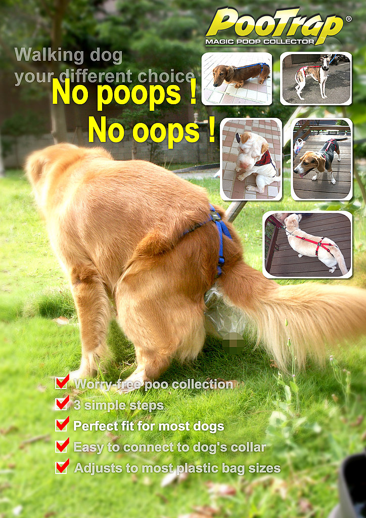 """""""No Poops! No Oops!"""""""