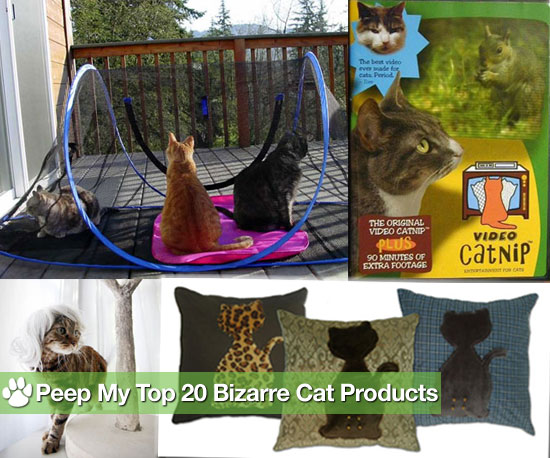 Is Your Kitty&#039;s Life Complete Without These Kooky Products?