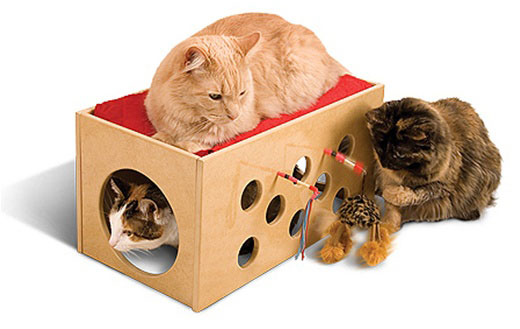Kitty Bunkbed and Playroom