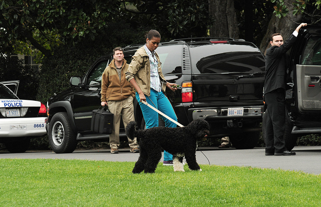 Michelle Obama Walking Bo on the South Lawn
