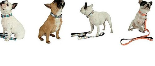 New Product Alert! Four New Fall &#039;09 Collar Designs From Bella Bean 