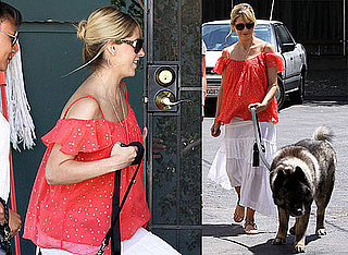 Photos of Pregnant Sarah Michelle Gellar Bringing Her Dog to the Vet