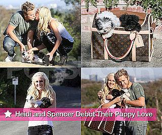 Photos of Heidi Montag and Spencer Pratt With Their Two New Puppies
