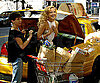 Slide Photo of Kate Hudson Putting Groceries in a Cab for Photo Shoot