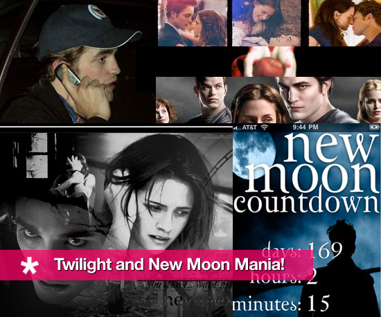 Geeky Twilight and New Moon Mania!