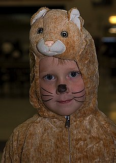 Inexpensive Animal Costumes for Kids