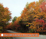 How to Burn Calories in the Fall
