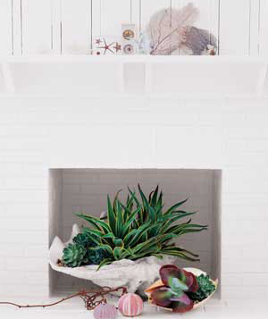 Real Simple brings Summer indoors with a seashell succulent planter.