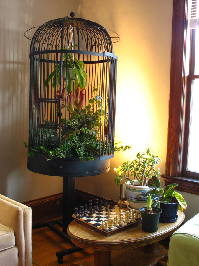 This tall birdcage fills up dead space in a corner and serves as a place to hang a hanging plant. Source: Flickr User RobFargo