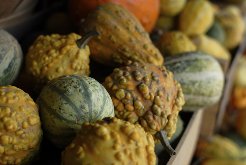 Do You Decorate With Gourds?