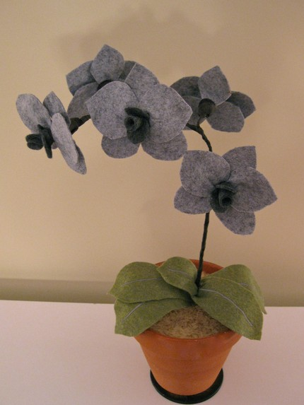 This Gray Lady Felted Orchid ($65) is sophisticated, graceful, and ideal for black thumbs!