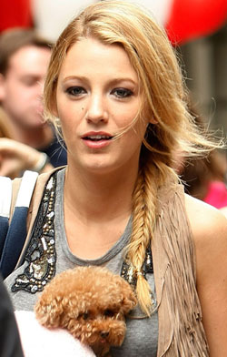Blake Lively Hair, Vanessa Hudgens Hair, Plait