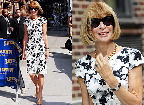 Photos and Video of Anna Wintour on David Letterman in Carolina Herrera