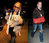 Jessica Simpson and her LV Dog Bag and Daisy in NYC
