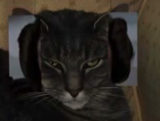 The Cat of 1000 Faces, Episode III (Star Wars Special)
